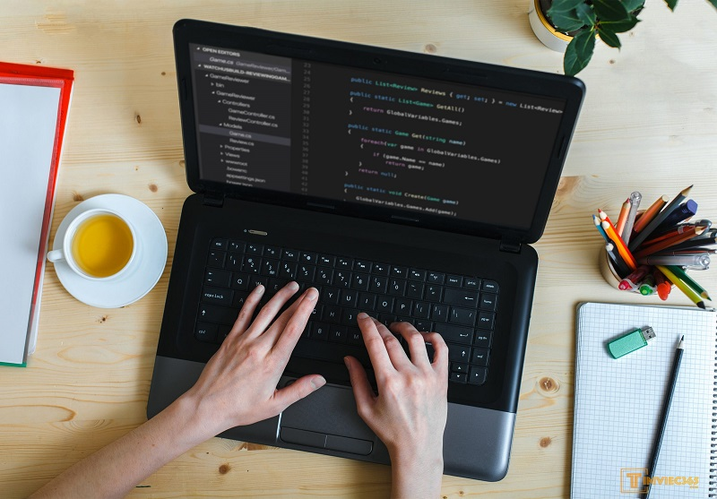 Các mẫu CV lập trình viên mới nhất 2021
