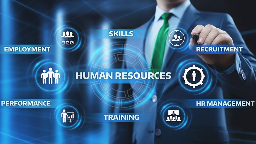 Các vị trí trong ngành nhân sự là gì? Công việc cụ thể